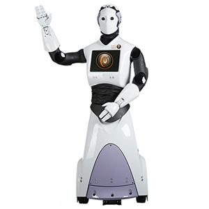 Robot ARI
