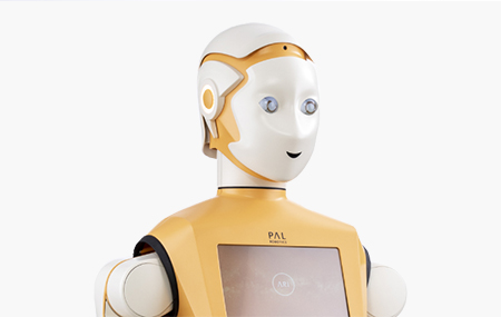 ARI humanoid robot
