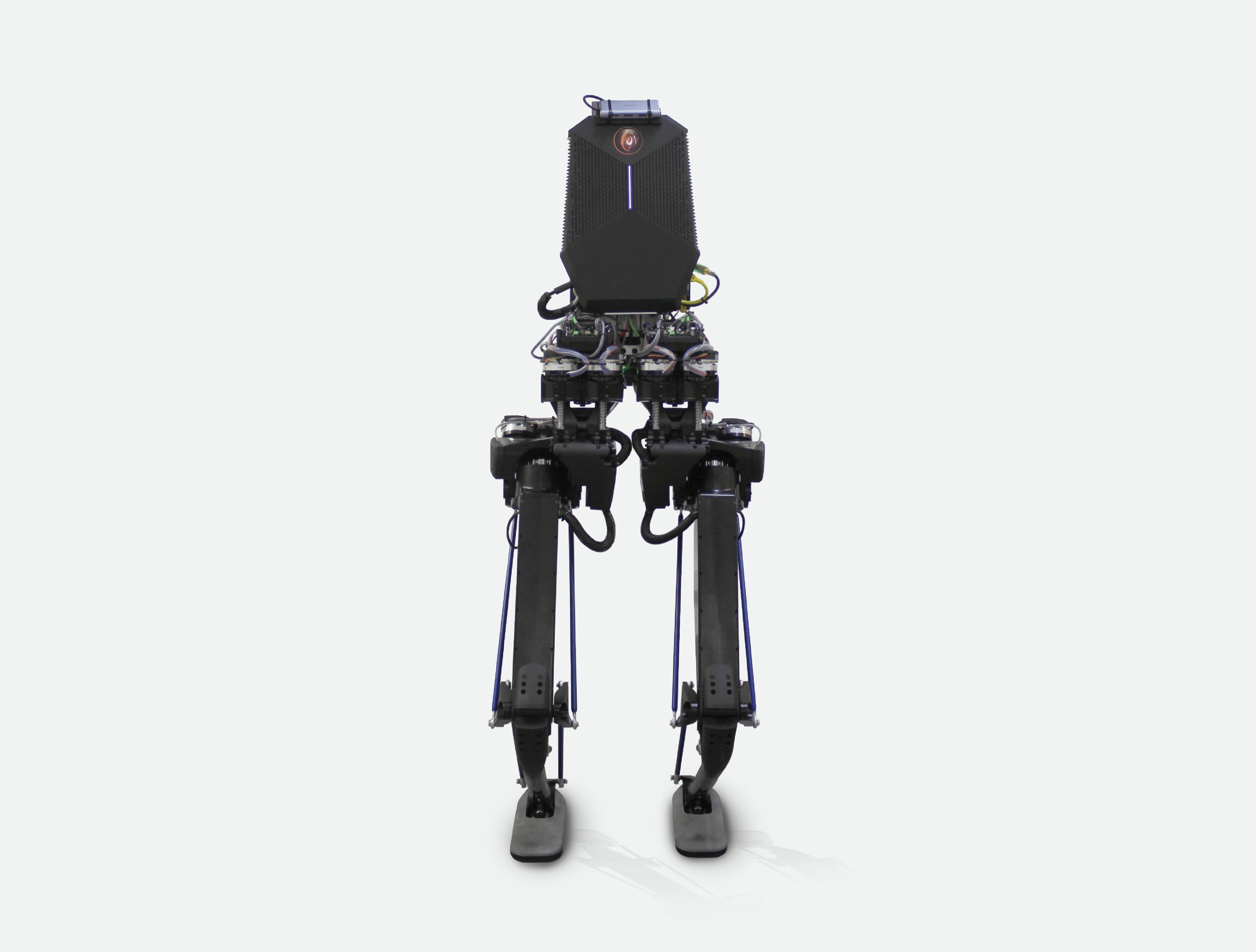 kanagroo robot by pal robotixc