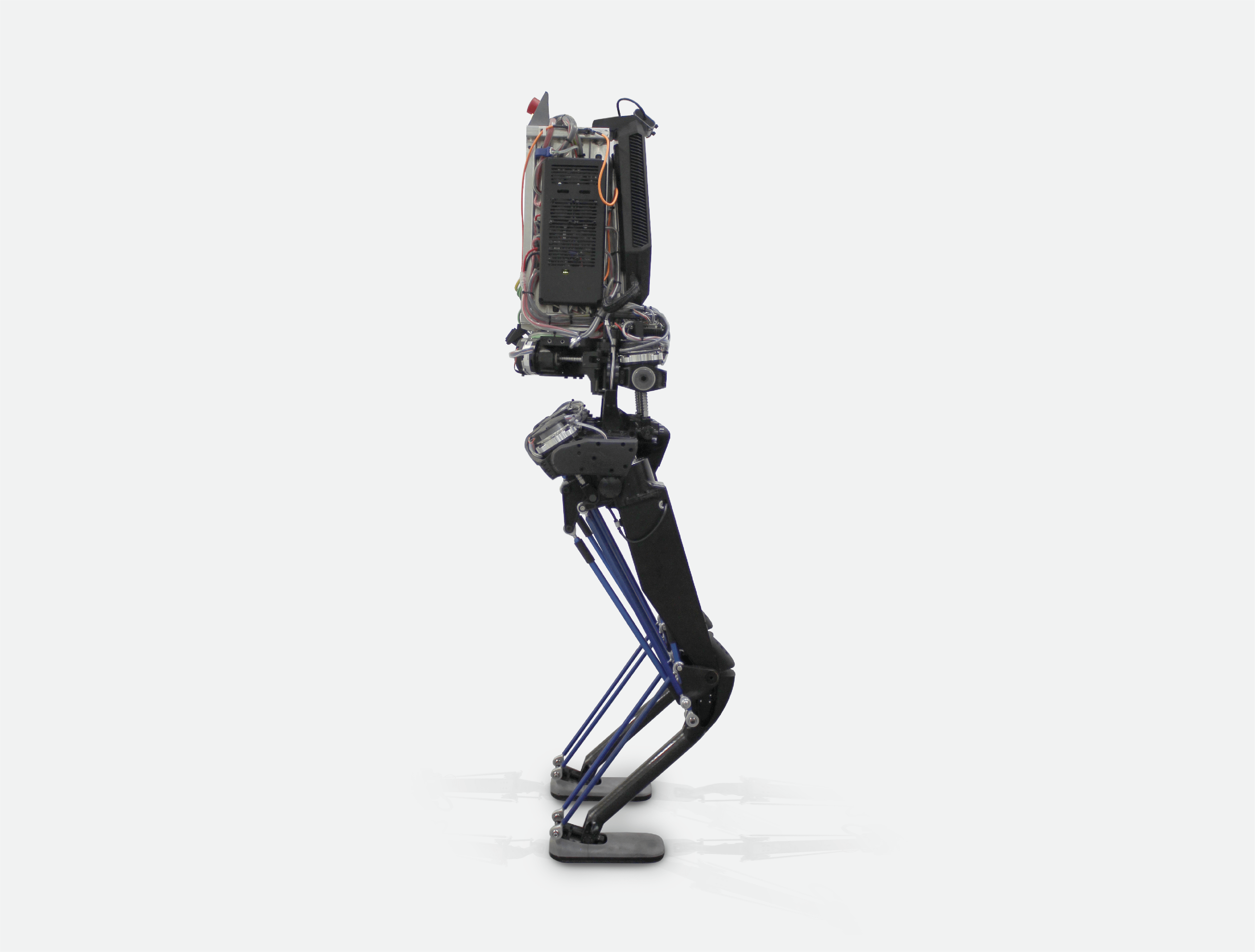kangaroo robot by pal robotics from the side
